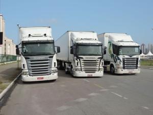 Naldo Transportes